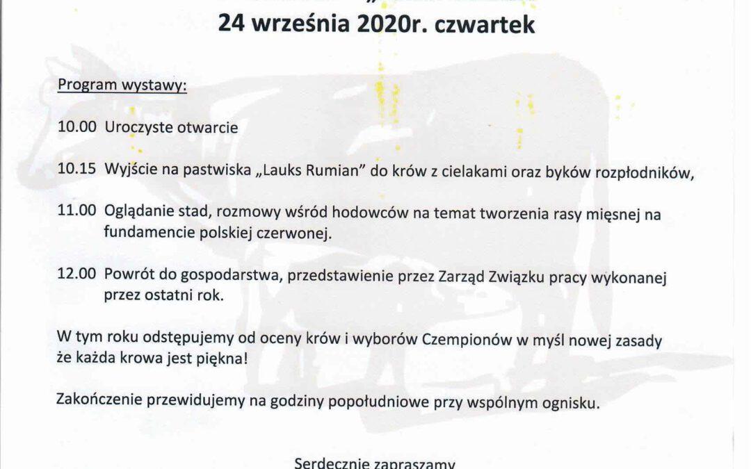 V Ogólnopolska Wystawa Polskiego Bydła Czerwonego w Typie Mięsnym